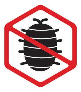 no bed bug icon