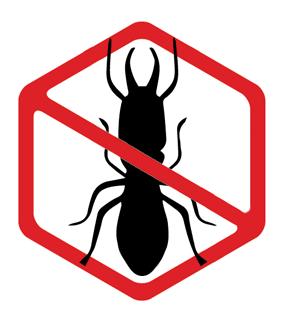 No Termite Icon